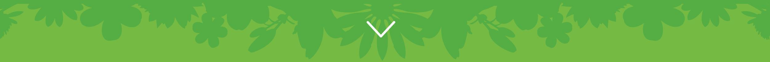 Blekingeplantan website design - Feb 2015