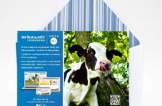 Branding design & marketing material for | Designed sometime in 2012 @ Quid Design Agency