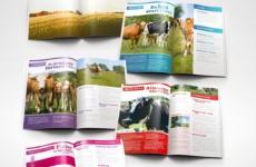 Brochure design & marketing material for   Designed sometime in 2012 @ Quid Design Agency