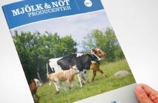 Brochure design for | Designed sometime in 2012 @ Quid Design Agency