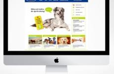 Web & Mobile designed way back in 2011 for | Designed sometime in 2011 @ Quid Design Agency
